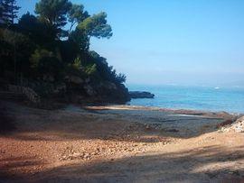 Reisepartner/-in - Reisebegleiterin für nach Mallorca gesucht