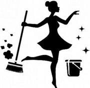 SUCHEN Putzfee Putzfrau Haushaltshilfe
