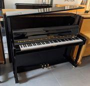 Klavier von Sauter - Ragazza 122