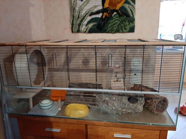 Hamsterkäfig, Hamsterterrarium