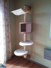 Katzenkratzbaum - freihängend an der Wand