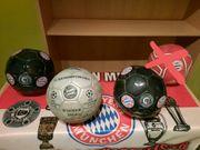Fußbälle vom FC Bayern München