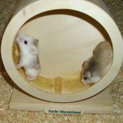 Hamsterrad aus Holz Laufrad für