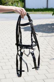 Pony Zaumzeug mit Trense