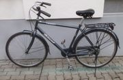 GIANT Fahrrad für 130kg Schwerlast
