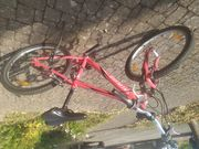 MTB Specialized 24 Zoll