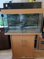 Juwel Aquarium mit Unterschrank 125l