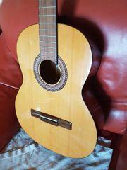 gitarren ohne stahl