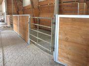 Große Innenbox mit Paddock