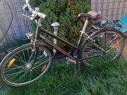 Fahrrad Pegasus unplattbar Bereifung