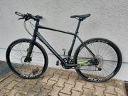 Specialized Sirrus Rennrad Rh 53cm