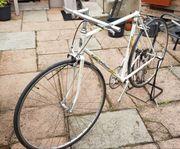 Gazelle Rennrad Rahmen und Gabel