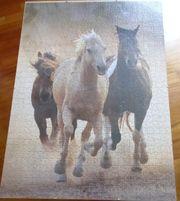 Pferdepuzzle lose hinter Glasrahmen ca
