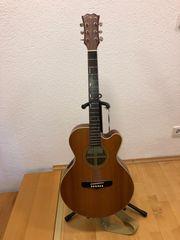 Fenix Akustik Gitarre mit integriertem
