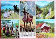 Grüße aus dem Schwarzwald - alte