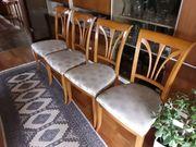 4 Salva Esszimmerstühle