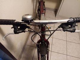 Kontakt partnervermittlung aus nenzing: Singlespeed fahrrad in gro