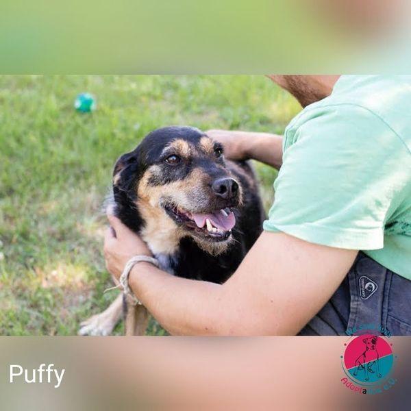 Puffy - Einer im besten Alter