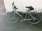 Bauer Herren Cross Bike Herren