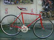 Straßenrennrad von COLUMBUS 12 Gang