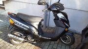 Roller Rex 500
