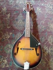 Mandoline Rogue RM-100A