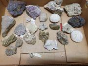 Mineralien Steine Restangebot