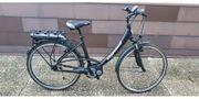 Steppenwolf Transterra Damen e-bike Bosch
