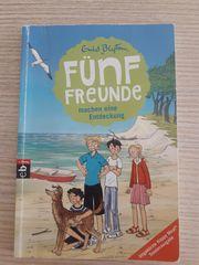 Fünf Freunde Buch