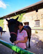Tierbetreuung Tiersitting in Potsdam und