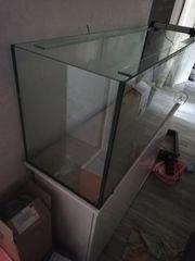 Aquarium 120x50 gebraucht komplett mit
