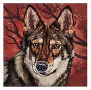 Limitierte FineArt Prints Wolfshund 20x20cm