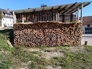Brennholz Kiefer 35EUR Ster