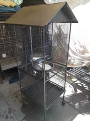 kanarienvögel inkl vogelvoliere