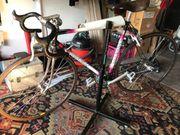 Rennrad für Damen Rahmen 54