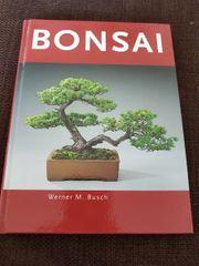 Bonsai Buch