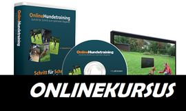 Tierbetreuung - Hundeschule Onlinekurs