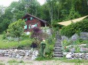 Freundliches Zuhause im Grünen gesucht