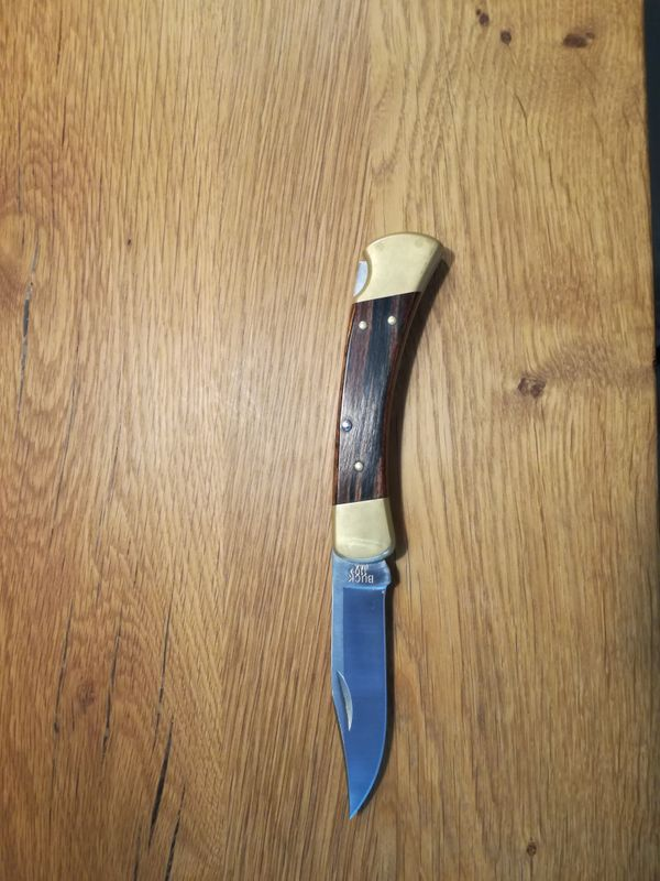 Buck Taschenmesser 110