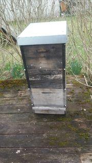 Bienenbeute Bienen Beute