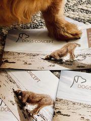 Craden Unterwolle Trimmen - Dogs Concept -