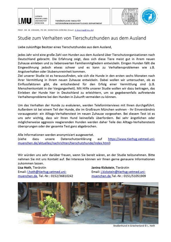 Studie Hunde aus dem Ausland