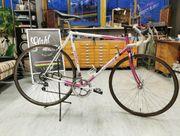 RAR Gazelle Ventoux Rennrad auf
