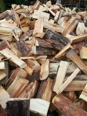 Trockenes Brennholz Weichholz