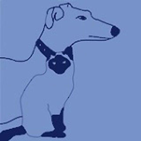 Hunde-Pflegestellen gesucht München u Bayern