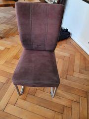 4 Stühle Freischwinger Esstisch