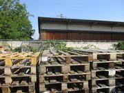 ca 150 Holzpaletten zum verfeuern