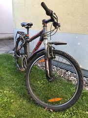 Mountainbike Head 24 Zoll Reifen