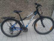Jugendrad Triumph 26 Zoll