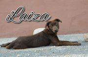 Laiza möchte Ihr Herz versüßen